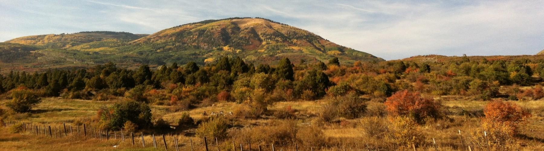 fallhill
