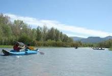 Verde One Day Kayak Trip