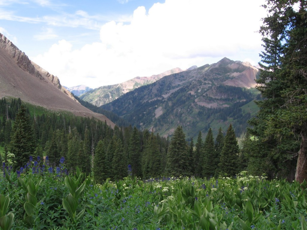 la plata canyon mild to wild rafting and jeep trail tours